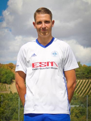 Hannes Niebling