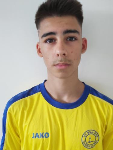 Tiago Dinis Freire Teixeira