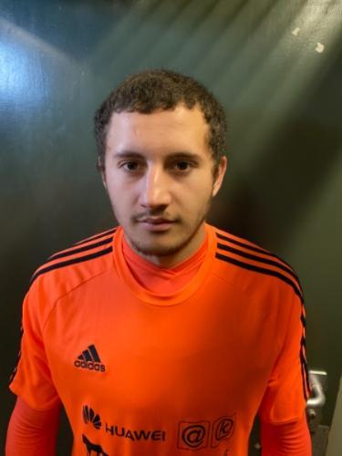 Nicolae Chitan